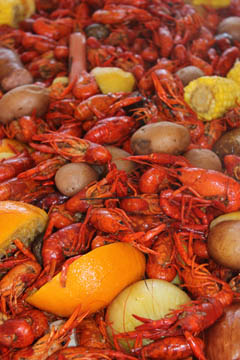 crawfish boil2014